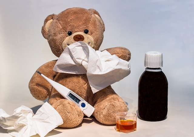 léčba medvěda