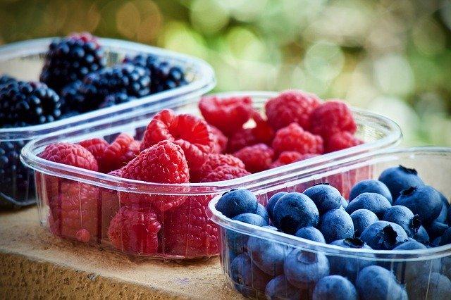 maliny, borůvky a ostružiny